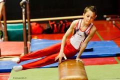 Champ. Fribourg. Artistique GAM-GAF à Romont 2016